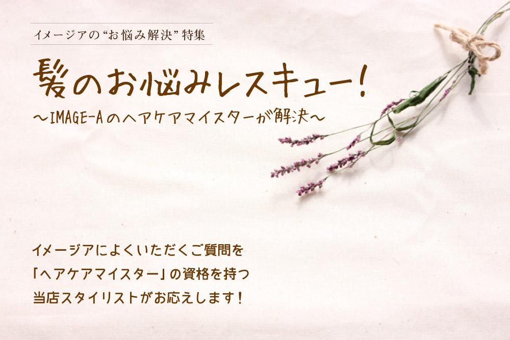 isshu201503