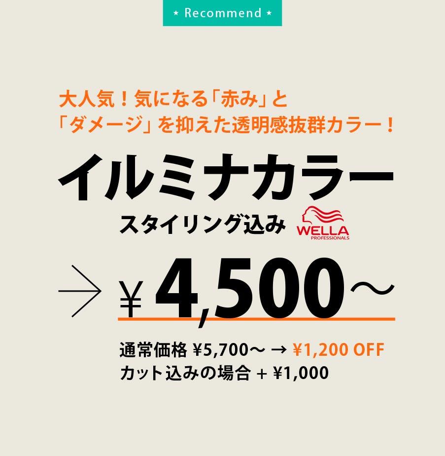 イルミナカラー(スタイリング込み)4,500円〜