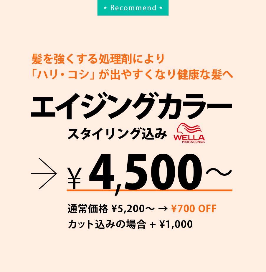 エイジングカラー(スタイリング込み)4,500円〜