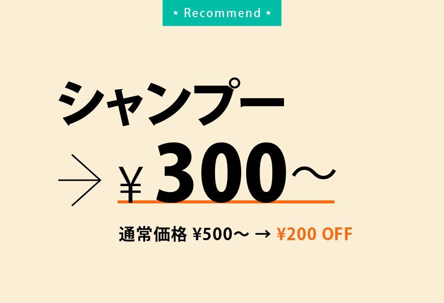 シャンプー300円〜